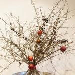 Schlehenzweige mit Nikolausäpfeln