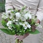 Maiglöckchen und zarte Blumen